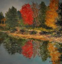 Autumn on Tussey Pond